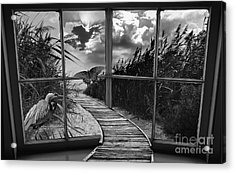 Sharing In The View Acrylic Print by Scott Allison