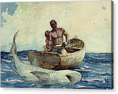 Shark Fishing Acrylic Print by Winslow Homer