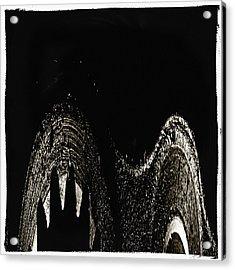 Sharp Acrylic Print by Skip Nall