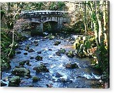 Shaugh Prior Bridge Acrylic Print by Ron Telford