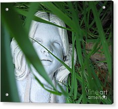Acrylic Print featuring the photograph She Is There by Amy Sorrell