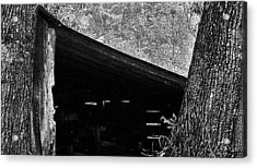 Acrylic Print featuring the photograph Shed Between Two Oaks Near Alexandria by Louis Nugent