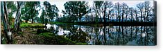 Shelley Creek Acrylic Print