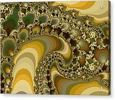 Shells On Sand II Acrylic Print