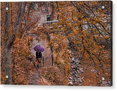 Acrylic Print featuring the photograph Alone Together by Tom Gort