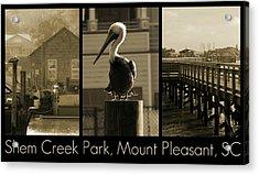 Shem Creek Park Acrylic Print