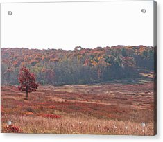 Acrylic Print featuring the photograph Shenandoah Plain by Shirin Shahram Badie