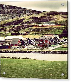 Shetland Acrylic Print