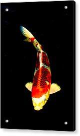 Shigure01 Acrylic Print