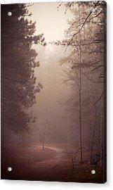 Shine Down On Me Acrylic Print by Dustin Abbott
