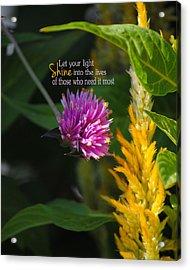 Shine Encouraging Pink And Yellow Flower Photograph Acrylic Print by Jai Johnson