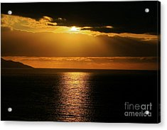 Acrylic Print featuring the photograph Shining Gold by Nicola Fiscarelli