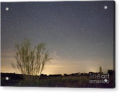 Shooting Star Acrylic Print by Andre Goncalves