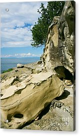 Shoreline Sculpture Acrylic Print by Frank Townsley