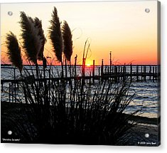 Shoreline Serenity Acrylic Print