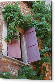 Shutters And Grapevines Acrylic Print by Sandra Anderson
