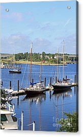 Side By Side IIi Acrylic Print by Suzanne Gaff