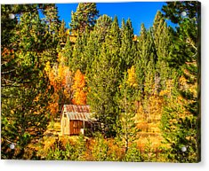 Sierra Nevada Rustic Americana Barn With Aspen Fall Color Acrylic Print by Scott McGuire