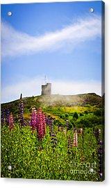 Signal Hill In St. John's Newfoundland Acrylic Print