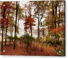 Acrylic Print featuring the photograph Silent Autumn by Yelena Rozov