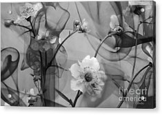 Silent Grief Acrylic Print
