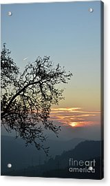 Acrylic Print featuring the photograph Silhouette At Sunset by Bruno Santoro