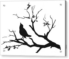 Silhouette: Bird On Branch Acrylic Print by Granger