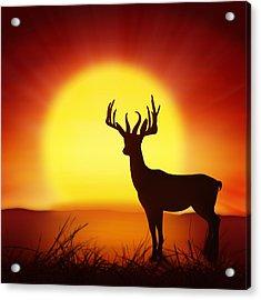 Silhouette Of Deer With Big Sun Acrylic Print by Setsiri Silapasuwanchai