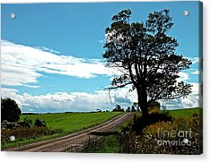 Acrylic Print featuring the photograph Silhouette On A Country Road by Christian Mattison