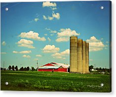 Silos Acrylic Print by Paulette B Wright