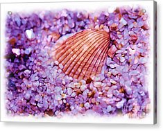 Silver Bells And Cockle Shells . . . Acrylic Print by Judi Bagwell