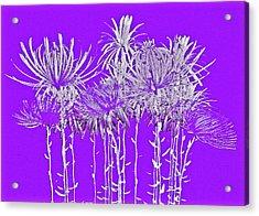 Silver Stems On Purple Acrylic Print by James Mancini Heath
