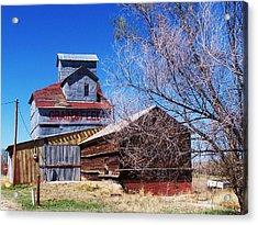 Acrylic Print featuring the photograph Simla Grain And Feed by Clarice  Lakota
