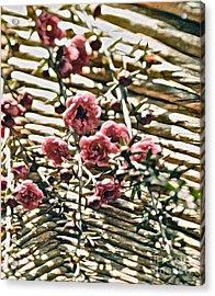Simple Charm Acrylic Print by Gwyn Newcombe