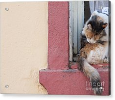 Sin Titulo Acrylic Print by Karin Cortez