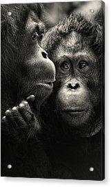 Singapore Zoo Acrylic Print