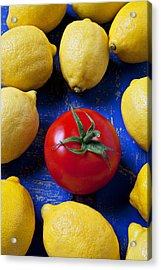 Single Tomato With Lemons Acrylic Print by Garry Gay