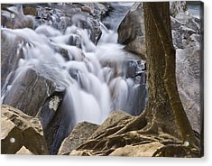 Sinks Cascade And Tree Acrylic Print