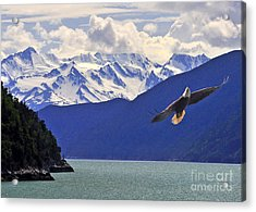 Acrylic Print featuring the photograph Skagway Bald Eagle by Jack Moskovita