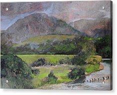 Sketch Near Aberystwyth Acrylic Print by Harry Robertson