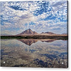 Acrylic Print featuring the photograph Skies Illusion by Tammy Espino