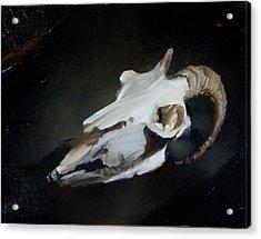 Skull Of Goat Acrylic Print