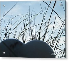 Sky Heart Acrylic Print by Laurence Oliver