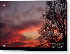 Acrylic Print featuring the photograph Sky On Fire by Art Whitton