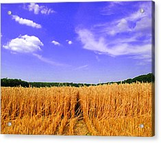 Sky Over The Field 3 Ae  Acrylic Print by Lyle Crump