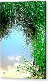Sky Reflected Acrylic Print by Suzanne Fenster