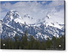 Skyscapers Acrylic Print by Charles Warren