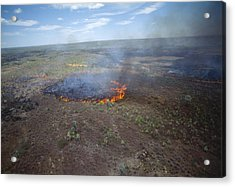Slash And Burn Agriculture Acrylic Print by Alexis Rosenfeld