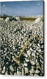 Sledgehammer In A Field Of Rock Acrylic Print by Bill Curtsinger