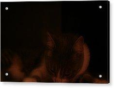 Sleeping In An Orange Room Acrylic Print by Eduardo Bouzas